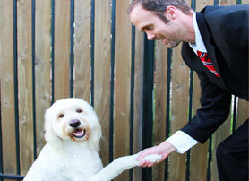 4 Networking Tips That You Can Learn From a Dog