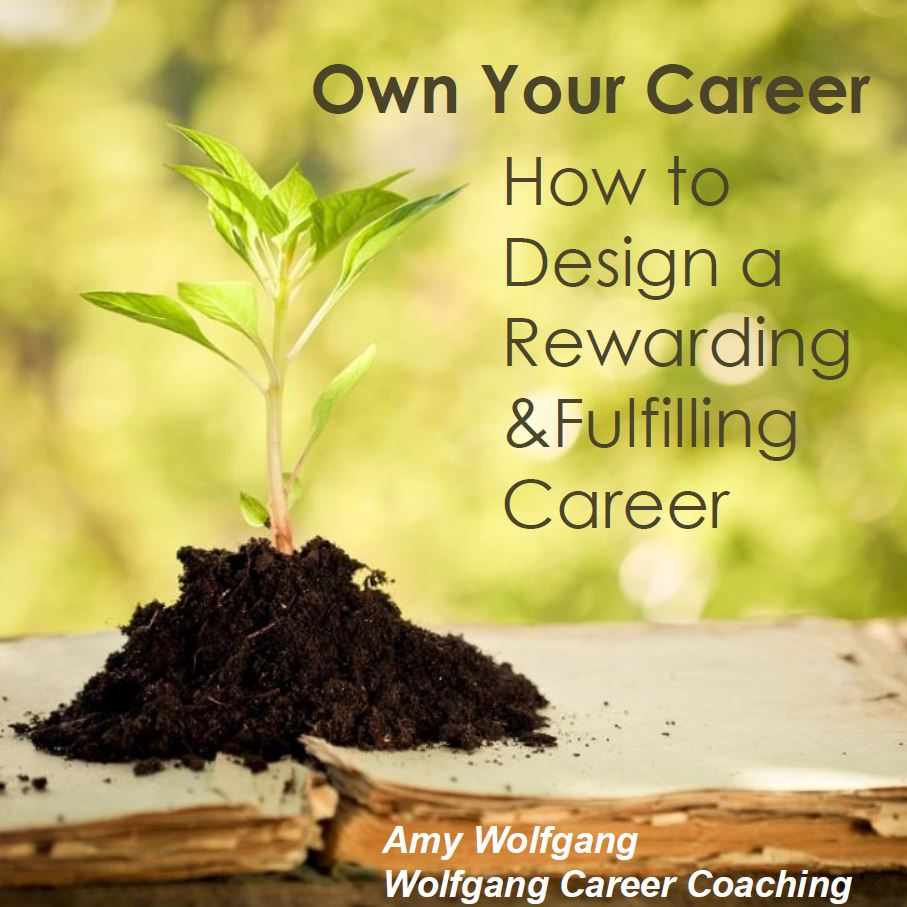 own your career how to design a rewarding and fulfilling career